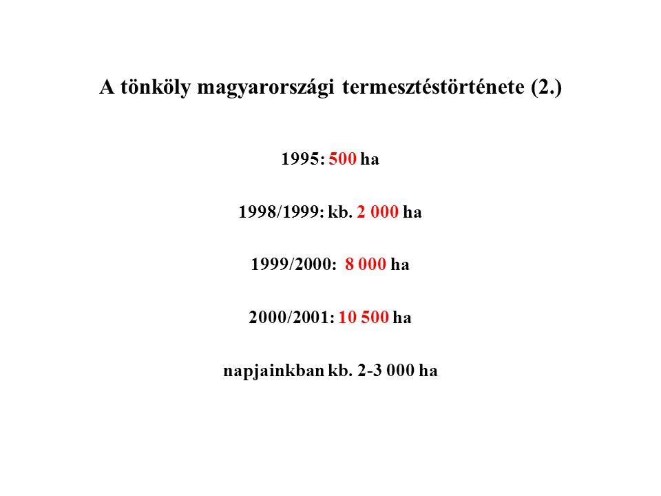 A tönköly magyarországi termesztéstörténete (2.)