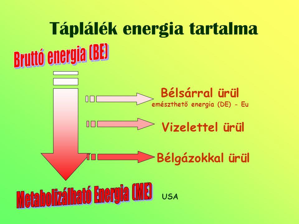 Táplálék energia tartalma