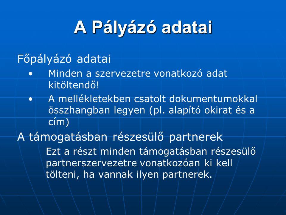 A Pályázó adatai Főpályázó adatai A támogatásban részesülő partnerek