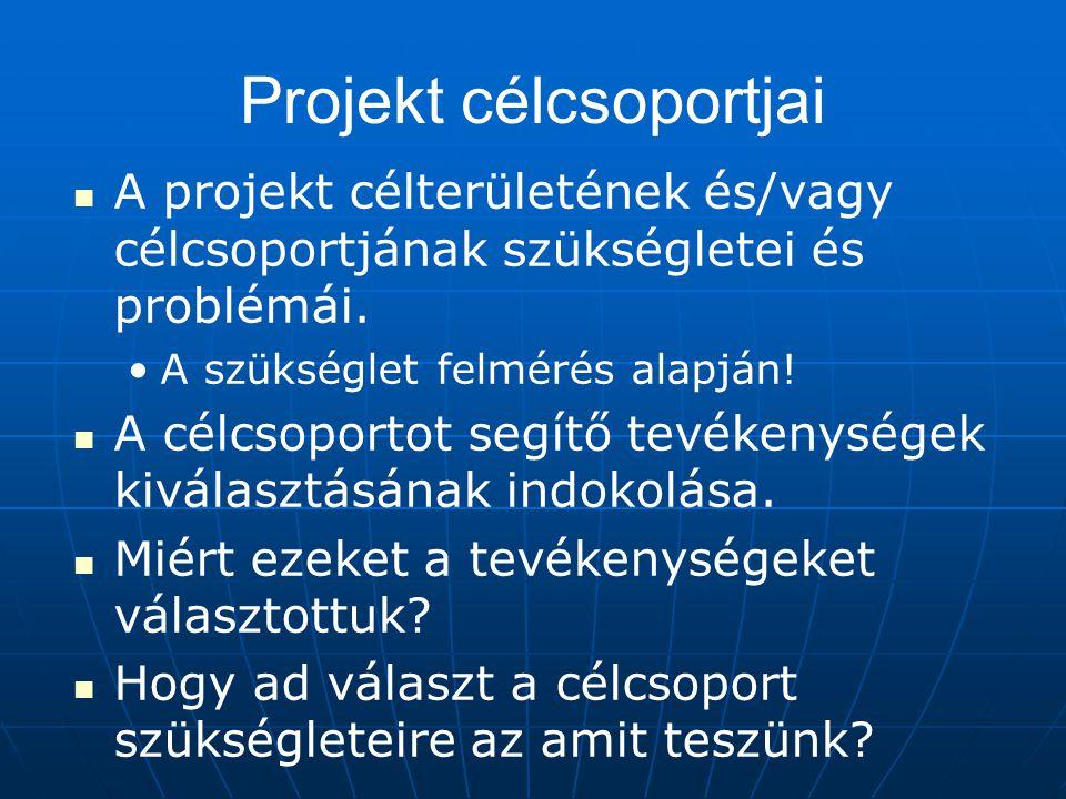 Projekt célcsoportjai