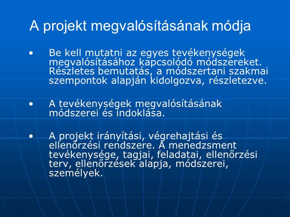 A projekt megvalósításának módja
