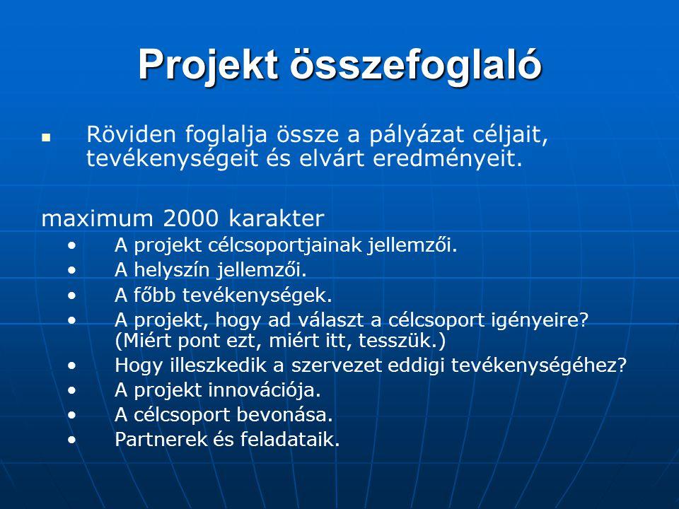 Projekt összefoglaló Röviden foglalja össze a pályázat céljait, tevékenységeit és elvárt eredményeit.