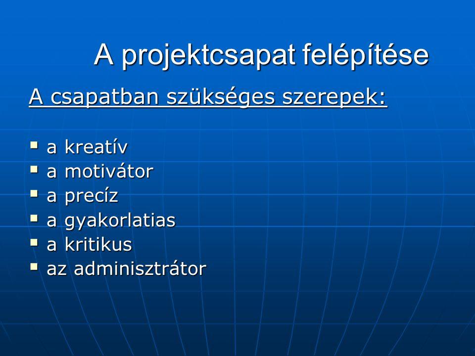 A projektcsapat felépítése