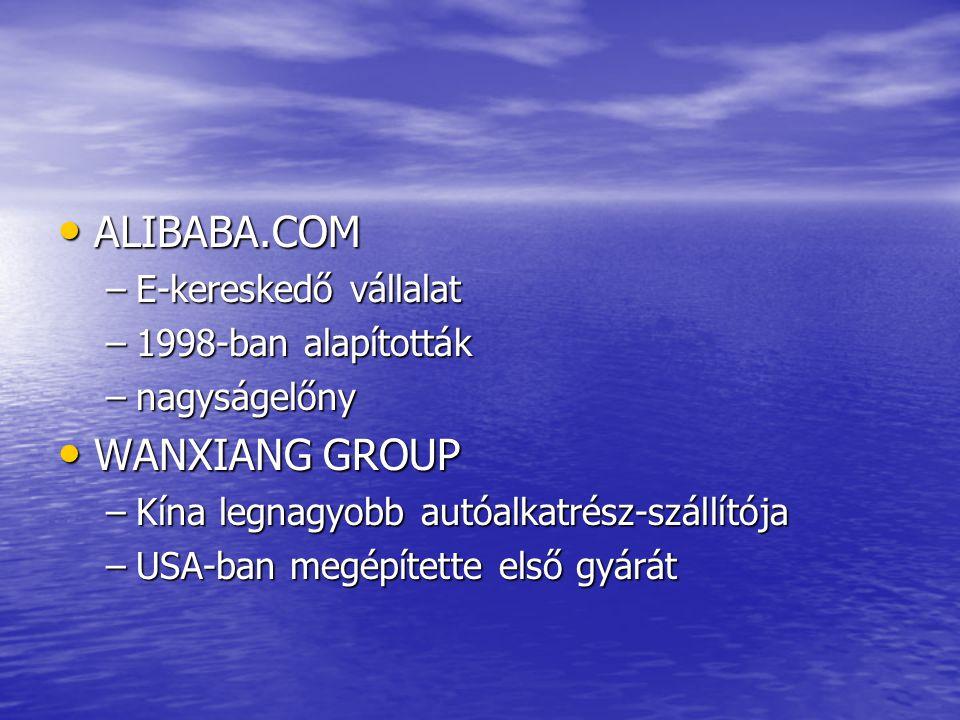ALIBABA.COM WANXIANG GROUP E-kereskedő vállalat 1998-ban alapították