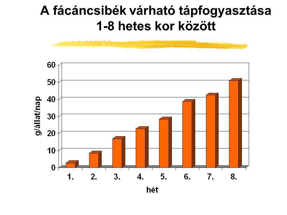 A fácáncsibék várható tápfogyasztása 1-8 hetes kor között