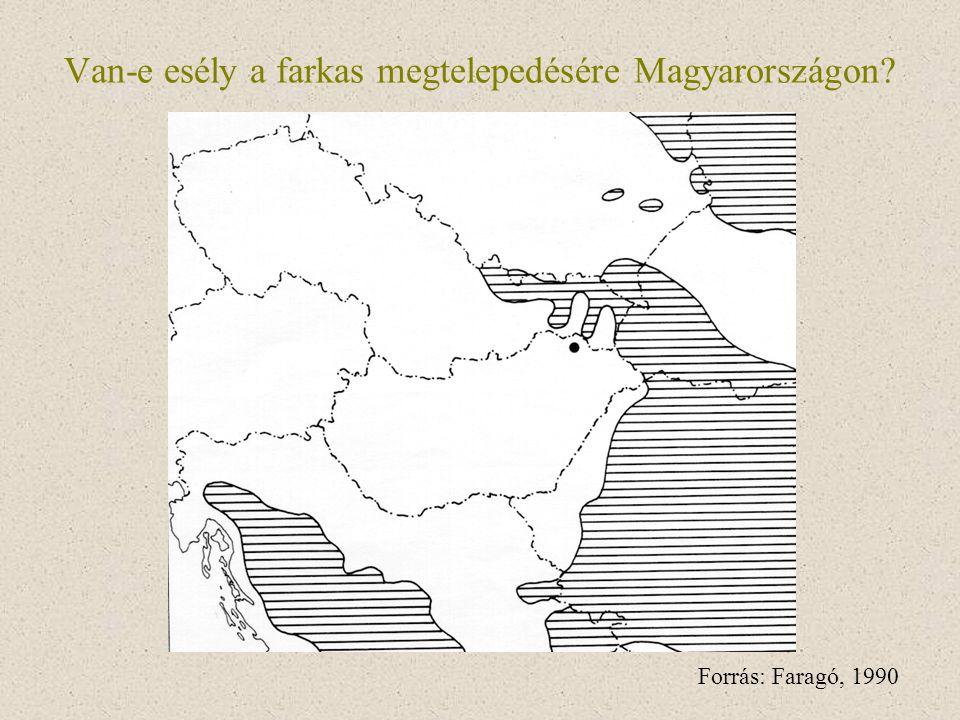 Van-e esély a farkas megtelepedésére Magyarországon
