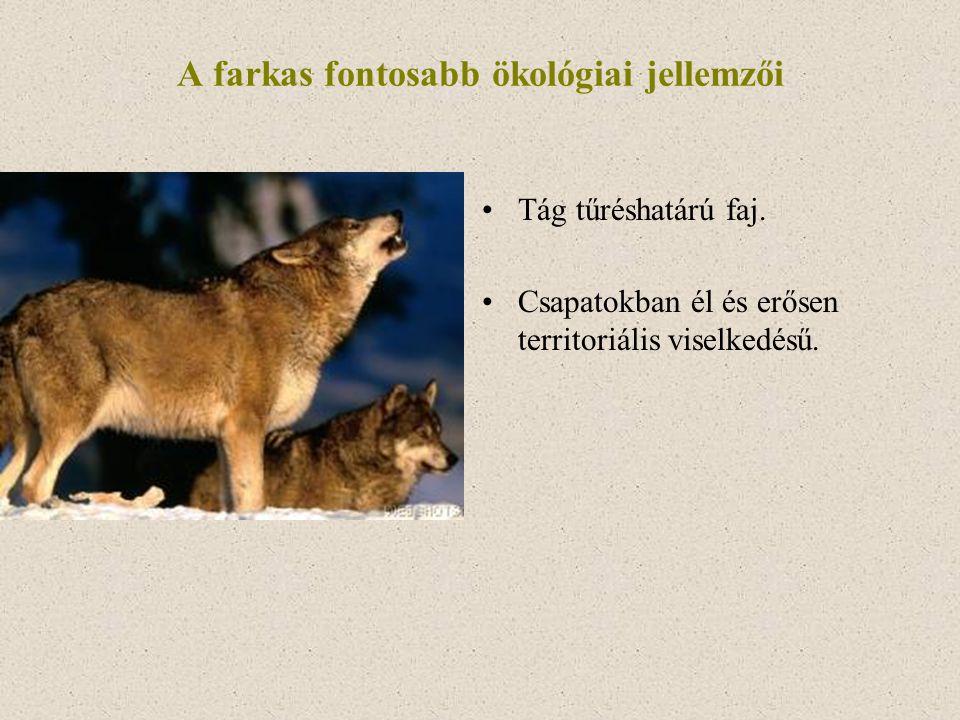 A farkas fontosabb ökológiai jellemzői