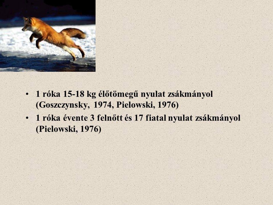 1 róka 15-18 kg élőtömegű nyulat zsákmányol (Goszczynsky, 1974, Pielowski, 1976)