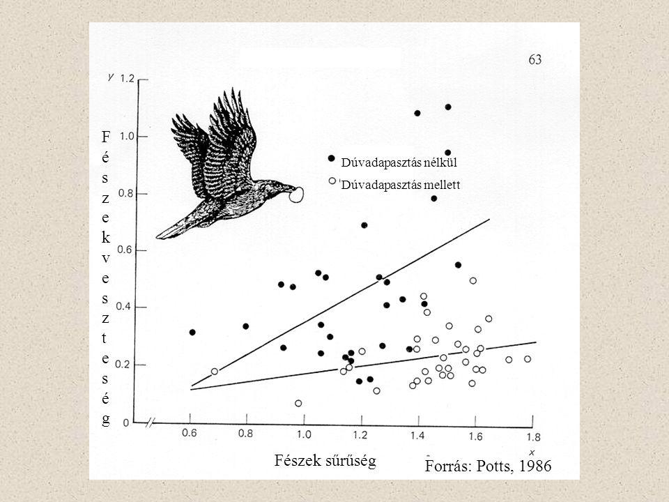 Fészek veszteség Fészek sűrűség Forrás: Potts, 1986
