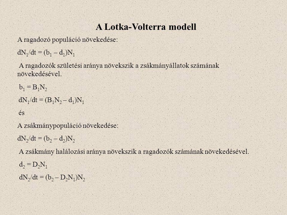 A Lotka-Volterra modell