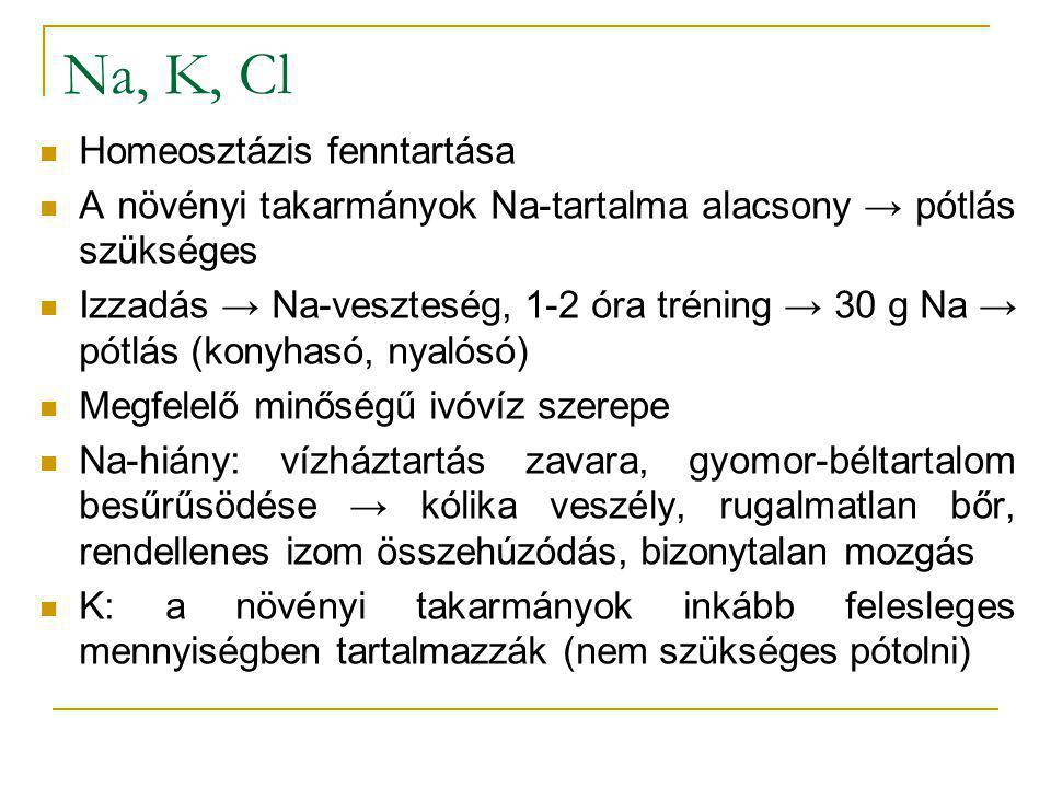 Na, K, Cl Homeosztázis fenntartása