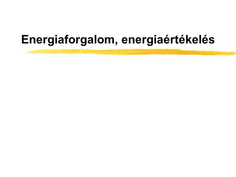 Energiaforgalom, energiaértékelés