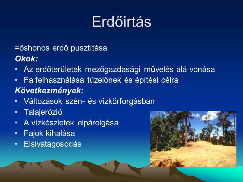 Erdőirtás =őshonos erdő pusztítása Okok: