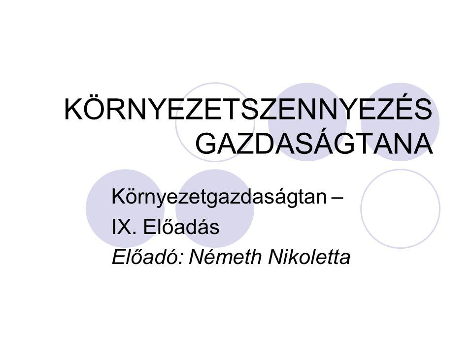 KÖRNYEZETSZENNYEZÉS GAZDASÁGTANA