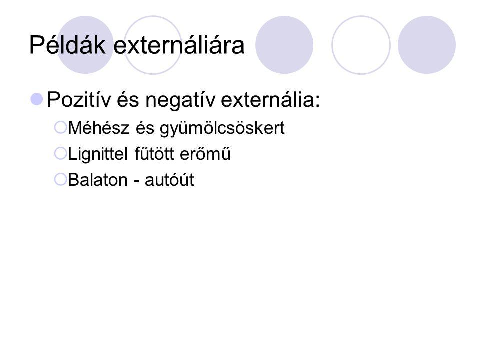 Példák externáliára Pozitív és negatív externália: