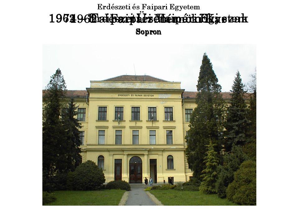 1974 – Faipari Üzemmérnöki szak