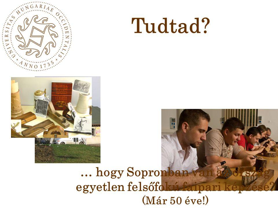 Tudtad … hogy Sopronban van az ország egyetlen felsőfokú faipari képzése (Már 50 éve!)