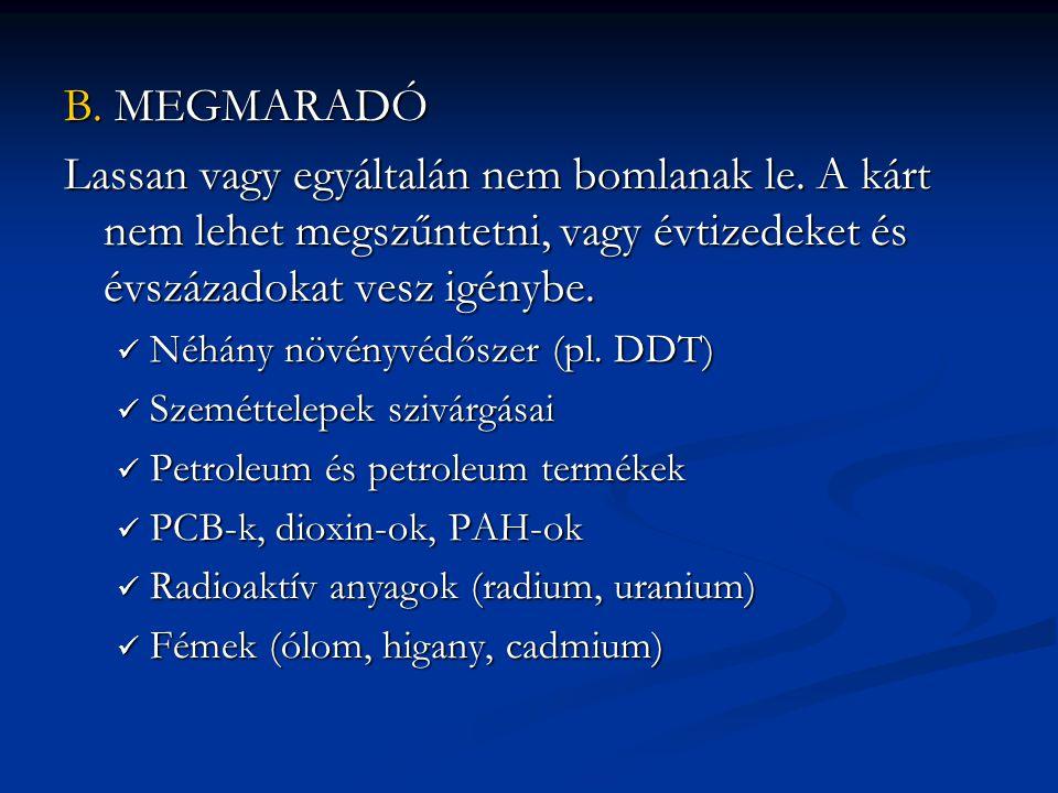 B. MEGMARADÓ Lassan vagy egyáltalán nem bomlanak le. A kárt nem lehet megszűntetni, vagy évtizedeket és évszázadokat vesz igénybe.