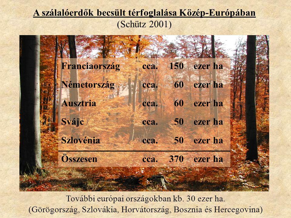 A szálalóerdők becsült térfoglalása Közép-Európában