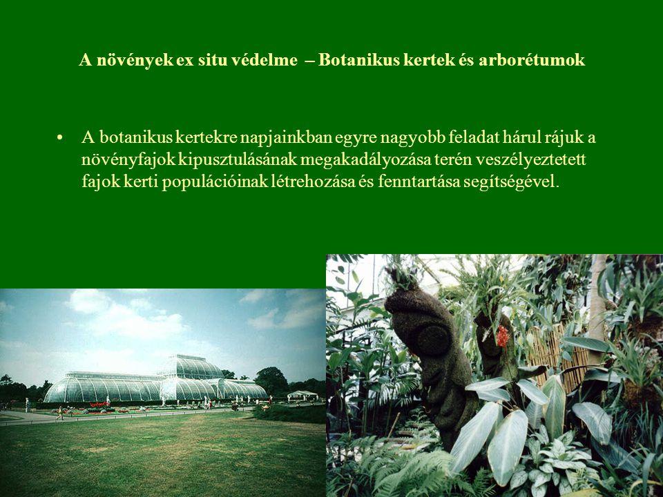 A növények ex situ védelme – Botanikus kertek és arborétumok