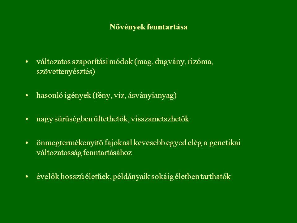 Növények fenntartása változatos szaporítási módok (mag, dugvány, rizóma, szövettenyésztés) hasonló igények (fény, víz, ásványianyag)
