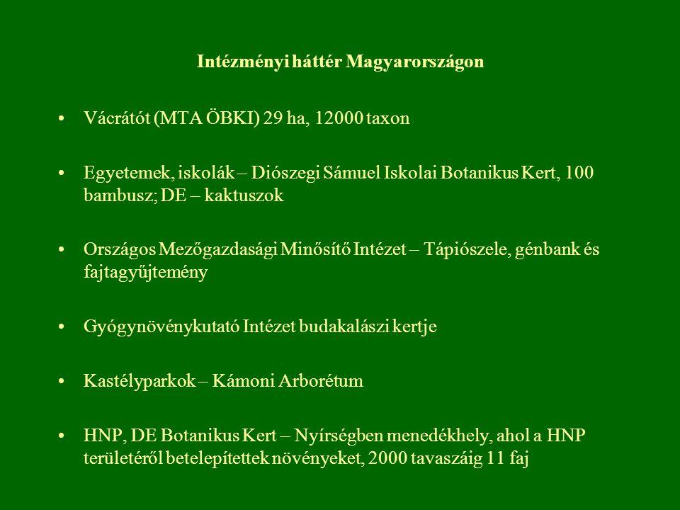 Intézményi háttér Magyarországon