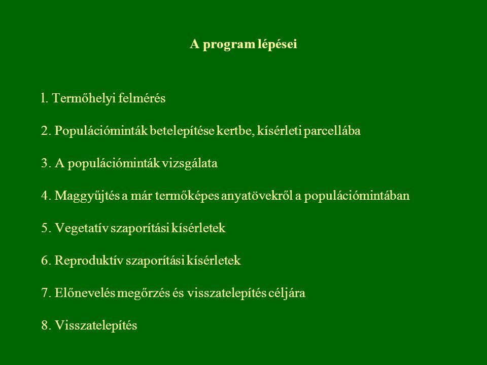 A program lépései l. Termőhelyi felmérés. 2. Populációminták betelepítése kertbe, kísérleti parcellába.