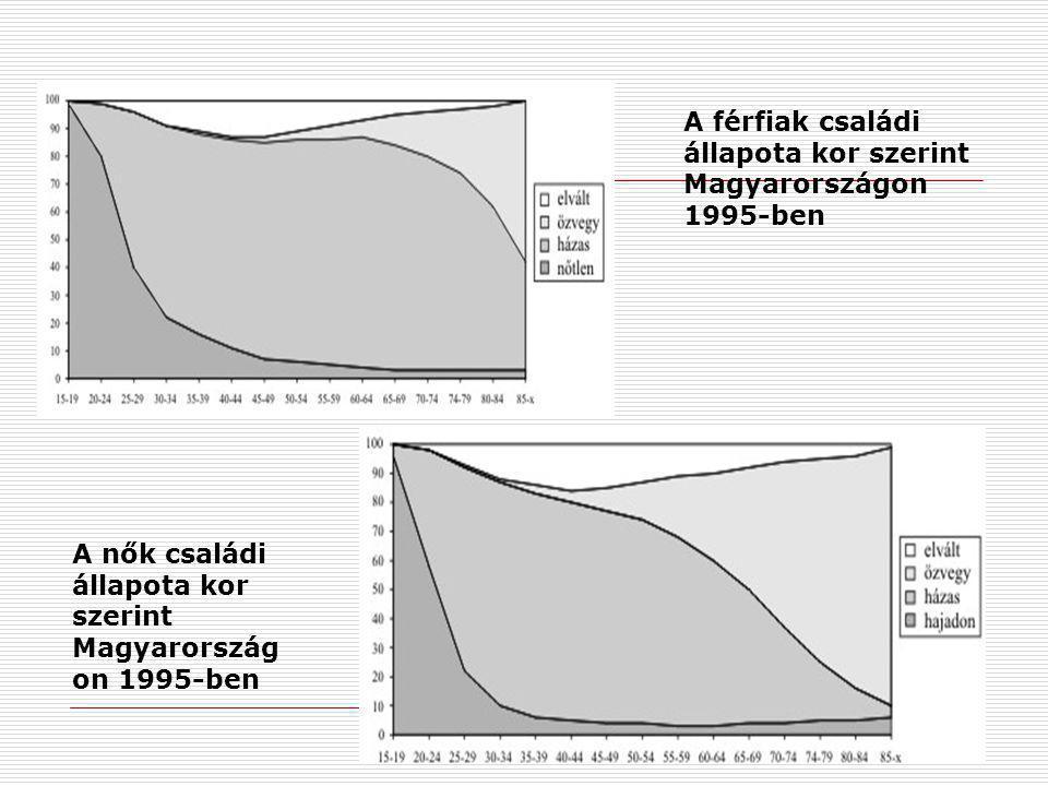 A férfiak családi állapota kor szerint Magyarországon 1995-ben