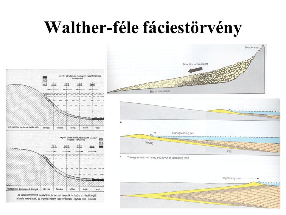 Walther-féle fáciestörvény