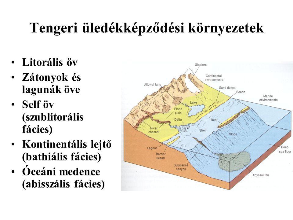 Tengeri üledékképződési környezetek