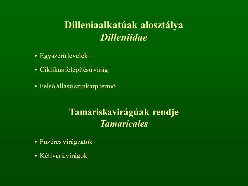 Dilleniaalkatúak alosztálya Tamariskavirágúak rendje