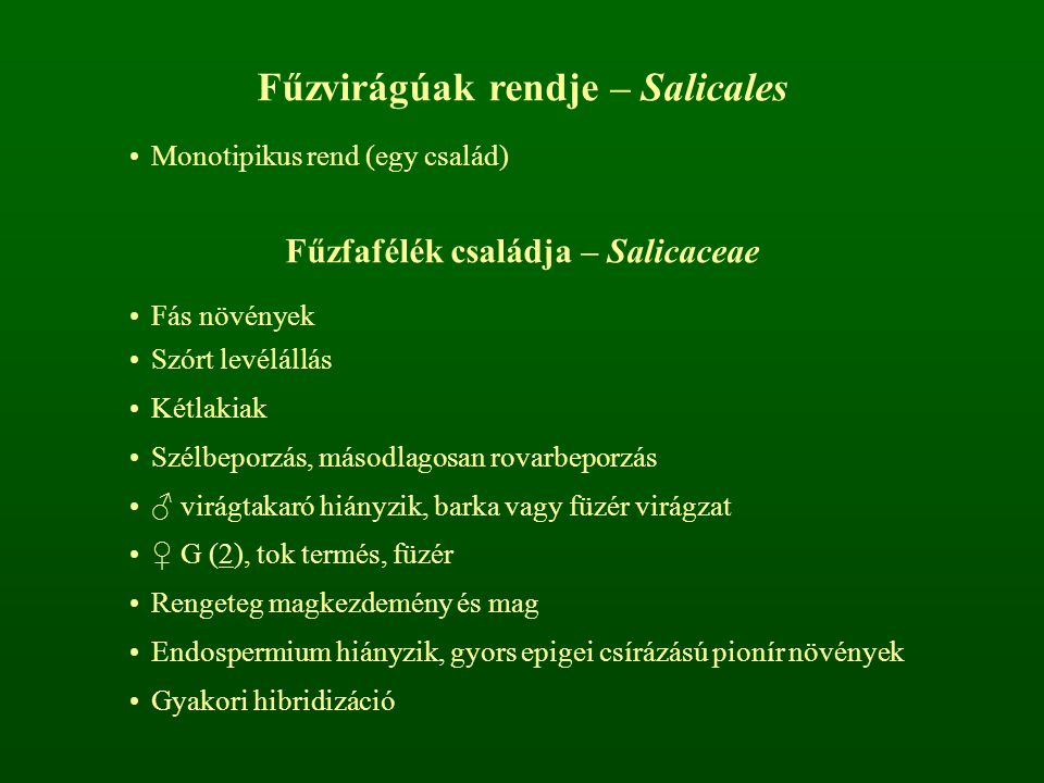 Fűzvirágúak rendje – Salicales Fűzfafélék családja – Salicaceae