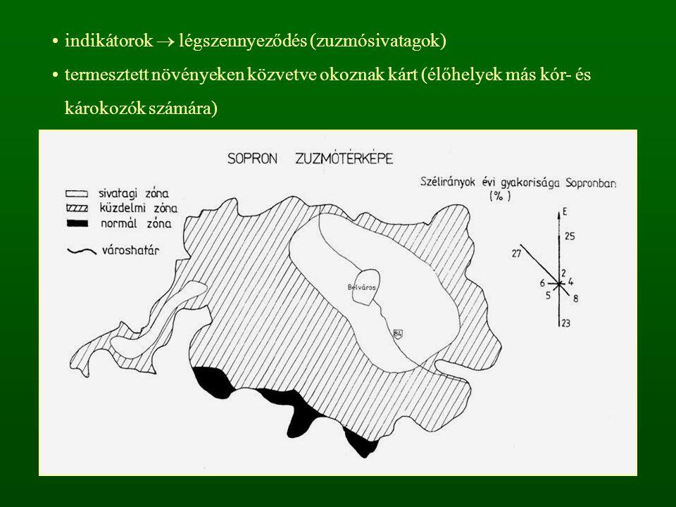 indikátorok  légszennyeződés (zuzmósivatagok)