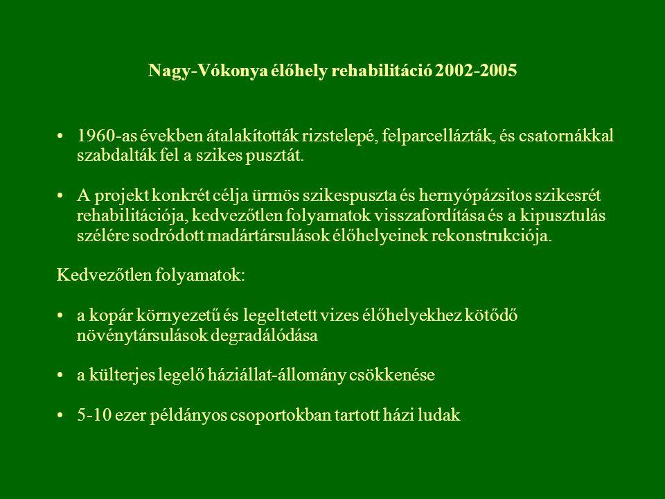 Nagy-Vókonya élőhely rehabilitáció 2002-2005