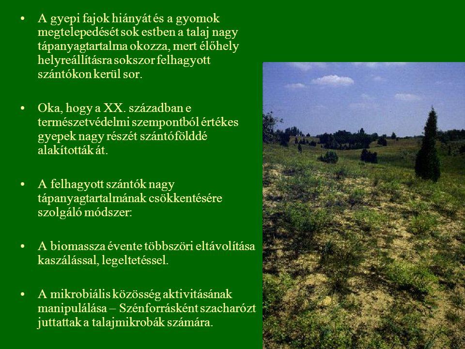A gyepi fajok hiányát és a gyomok megtelepedését sok estben a talaj nagy tápanyagtartalma okozza, mert élőhely helyreállításra sokszor felhagyott szántókon kerül sor.