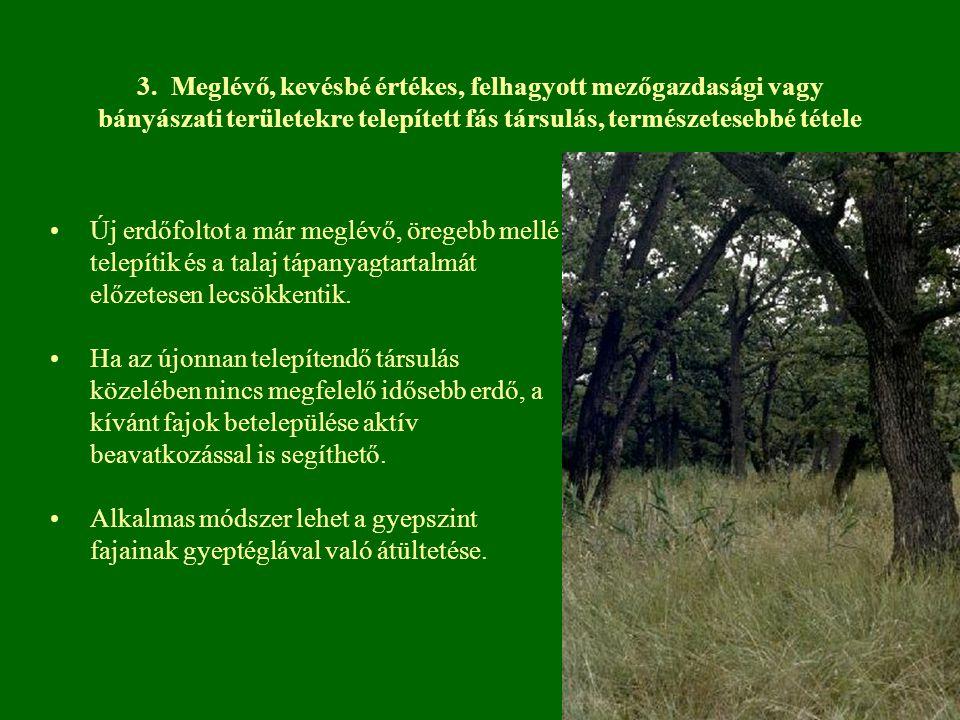 3. Meglévő, kevésbé értékes, felhagyott mezőgazdasági vagy bányászati területekre telepített fás társulás, természetesebbé tétele
