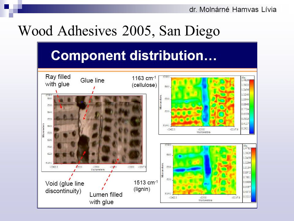 Wood Adhesives 2005, San Diego