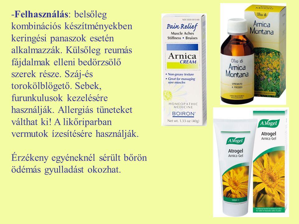 -Felhasználás: belsőleg kombinációs készítményekben keringési panaszok esetén alkalmazzák. Külsőleg reumás fájdalmak elleni bedörzsölő szerek része. Száj-és torokölblögető. Sebek, furunkulusok kezelésére használják. Allergiás tüneteket válthat ki! A likőriparban vermutok ízesítésére használják.