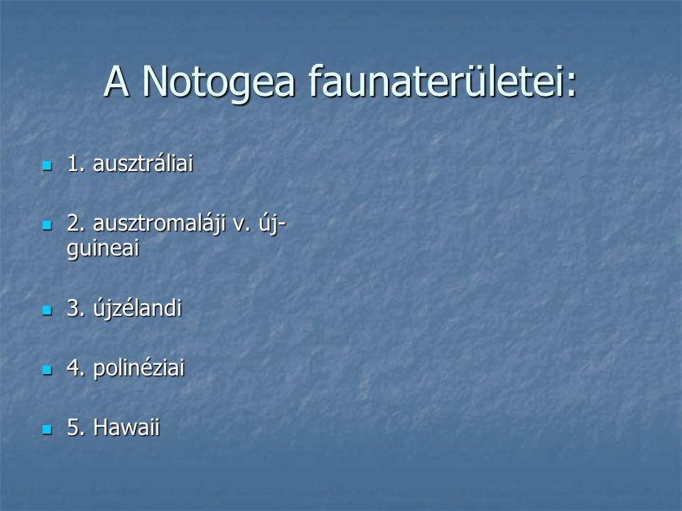A Notogea faunaterületei: