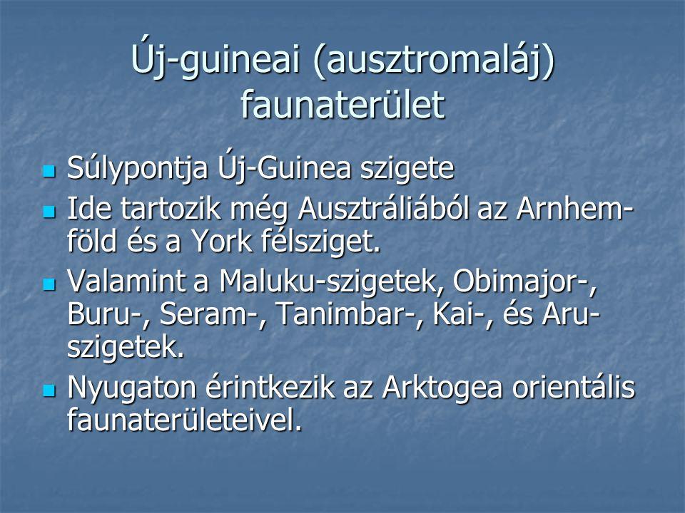 Új-guineai (ausztromaláj) faunaterület