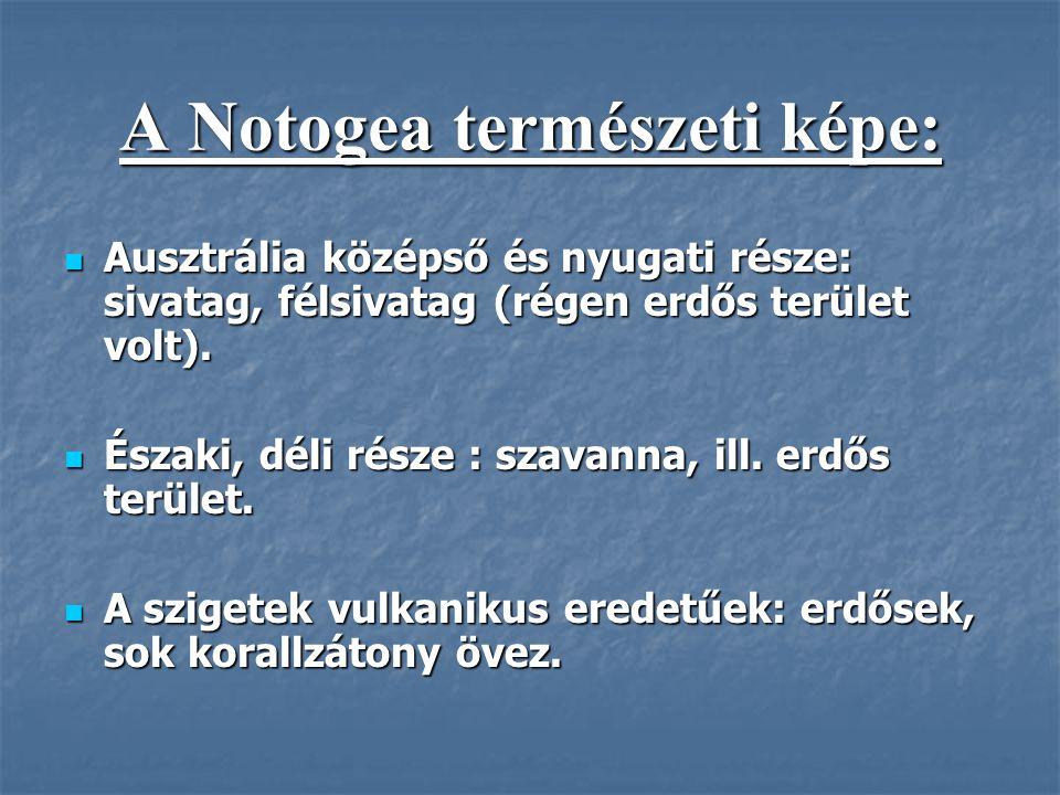 A Notogea természeti képe:
