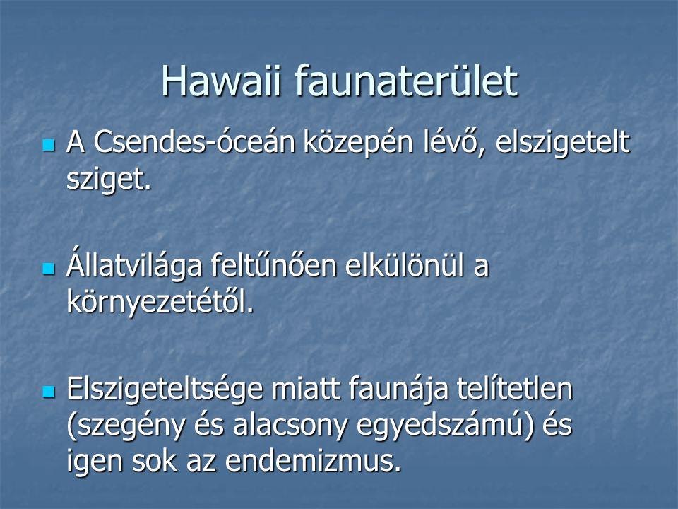 Hawaii faunaterület A Csendes-óceán közepén lévő, elszigetelt sziget.