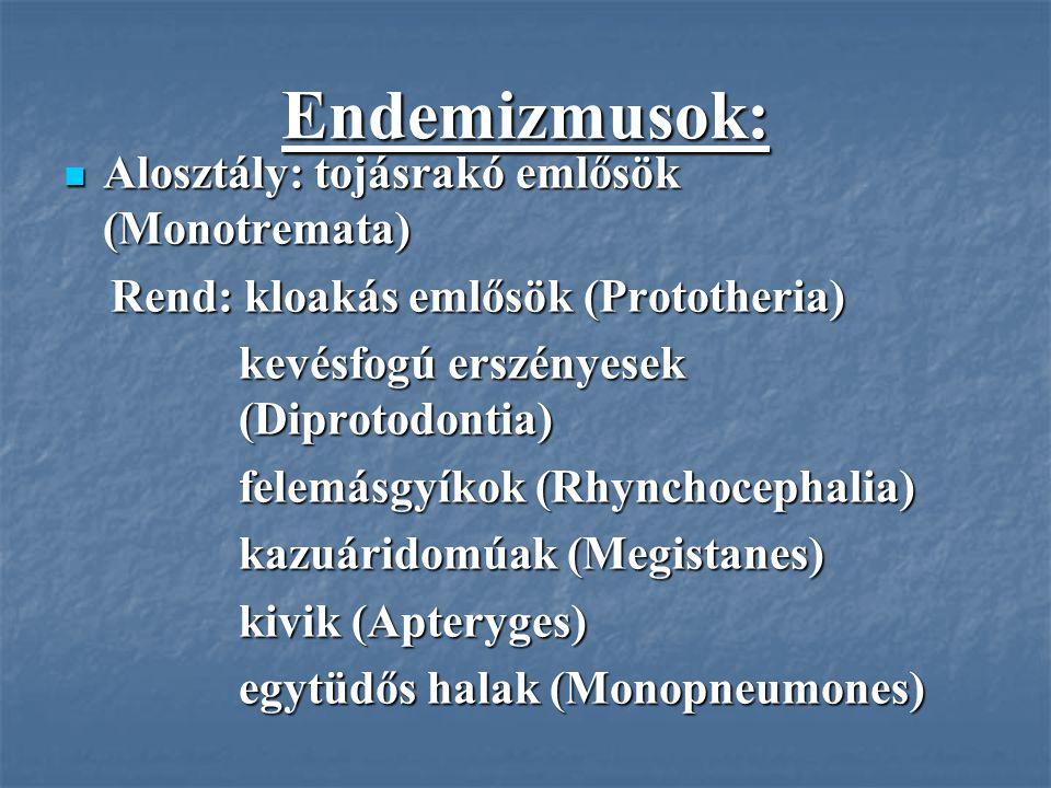 Endemizmusok: Alosztály: tojásrakó emlősök (Monotremata)