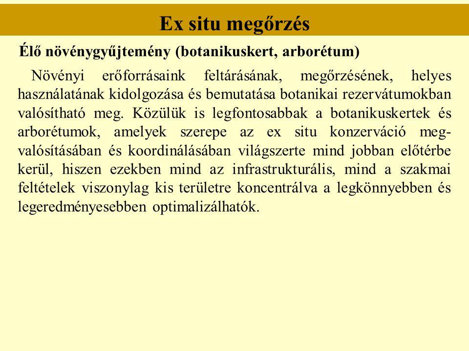 Ex situ megőrzés Élő növénygyűjtemény (botanikuskert, arborétum)