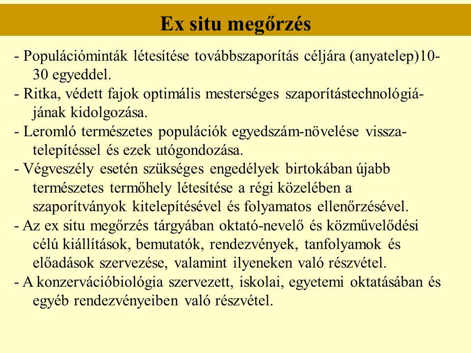 Ex situ megőrzés - Populációminták létesítése továbbszaporítás céljára (anyatelep)10-30 egyeddel.