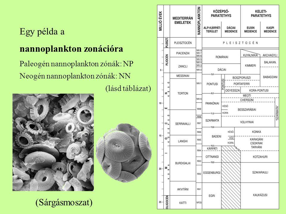 nannoplankton zonációra