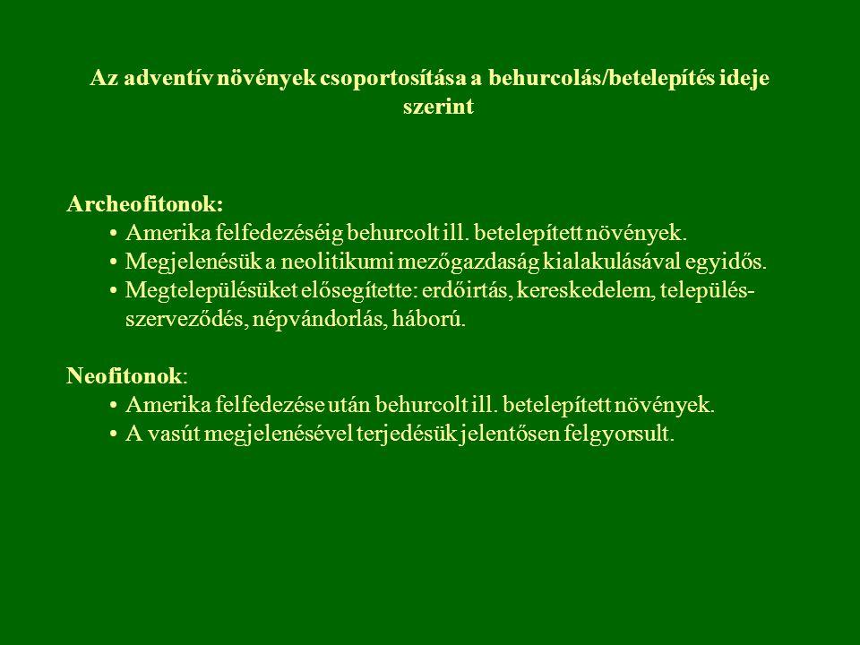 Az adventív növények csoportosítása a behurcolás/betelepítés ideje szerint