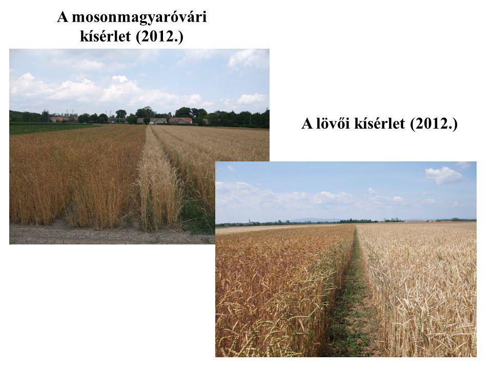 A mosonmagyaróvári kísérlet (2012.)