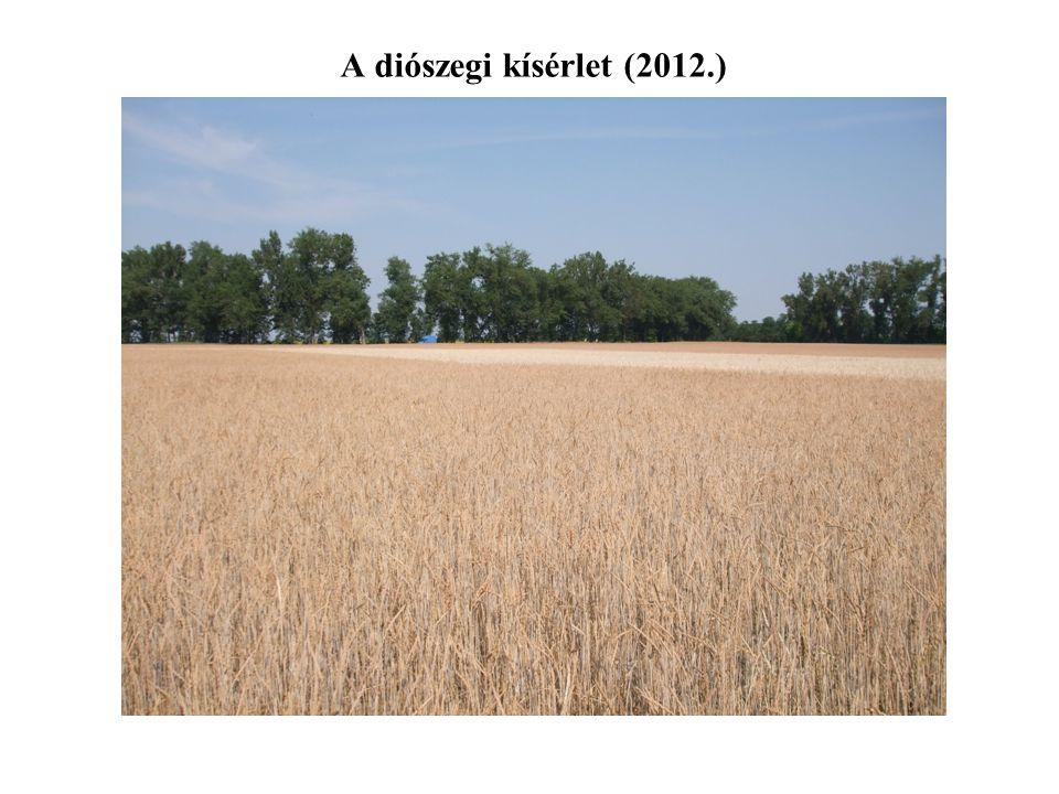 A diószegi kísérlet (2012.)