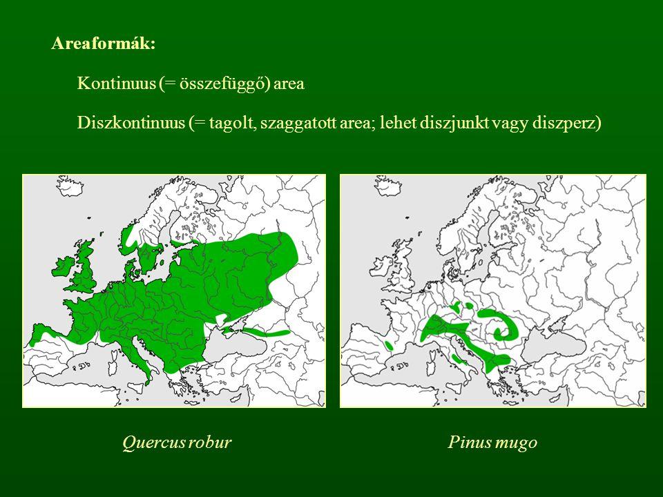 Areaformák: Kontinuus (= összefüggő) area. Diszkontinuus (= tagolt, szaggatott area; lehet diszjunkt vagy diszperz)